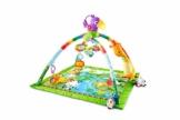 Fisher-Price GXC35 - Rainforest Erlebnisdecke, Krabbeldecke mit Musik und Lichtern, Spieldecke für Babys mit weichem Spielbogen, ab 0 Monaten, mit Tukan, Abweichungen in Verpackung vorbehalten - 1