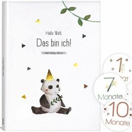 Mein Babyalbum Lino - Das bin ich! Babytagebuch für Neugeborene Junge/Mädchen 1. Jahr bis Kindergarten & Einschulung - A4, 66 Seiten + Meilenstein Sticker für Erinnerungsfotos - 1